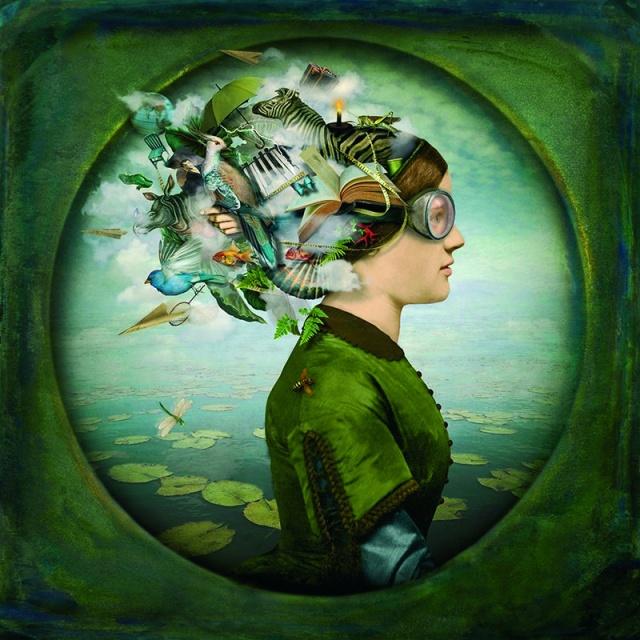 Maggie Taylor, The burden of dreams